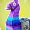 Fortnite: Save the World's loot boxes face legal attack