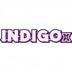 IndigoX 2019